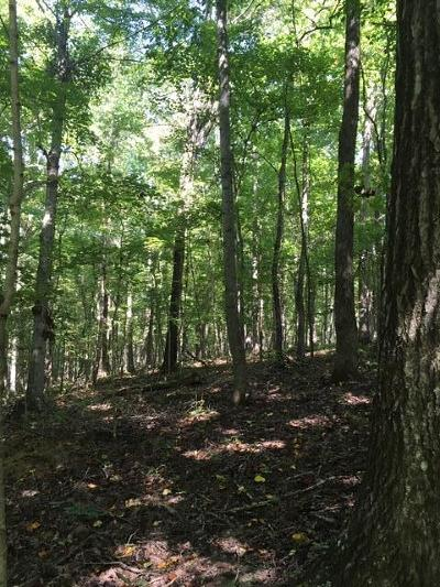 Franklin Residential Lots & Land For Sale: 1 Greenbrier Rd