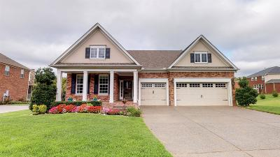 Nolensville Single Family Home For Sale: 7504 Sheldon Park Dr