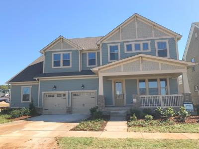 Hendersonville Single Family Home For Sale: 199 Ashington Circle Lot 95