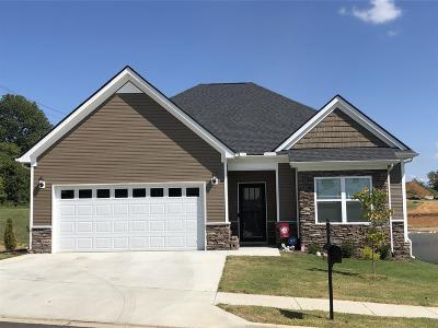 Spring Hill Single Family Home For Sale: 309 Turney Lane Lot 49
