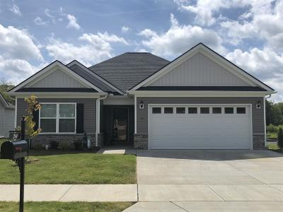 Spring Hill  Single Family Home For Sale: 317 Turney Lane Lot 51