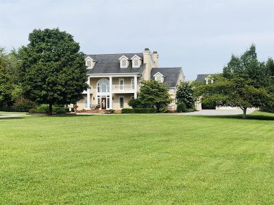 Hendersonville Single Family Home For Sale: 162 Jones Ln