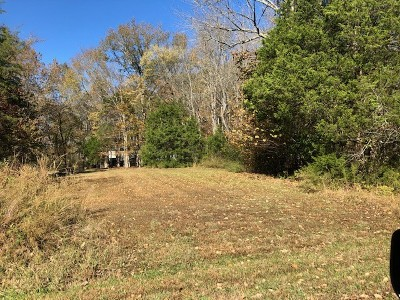 Spring Hill Residential Lots & Land For Sale: 1100 Robertson Road