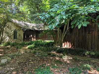 Franklin County Single Family Home For Sale: 271 Blackwood Hollow Run