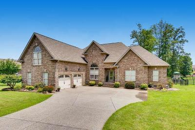 Greenbrier Single Family Home For Sale: 1083 Carrs Creek Blvd