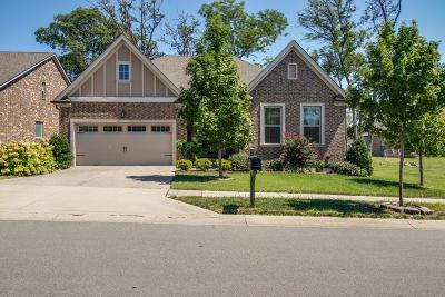 Nolensville Single Family Home For Sale: 5072 Falling Water Rd