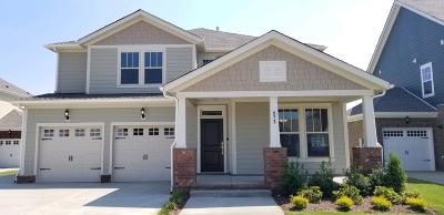 Hendersonville Single Family Home For Sale: 572 Nottingham Avenue #513