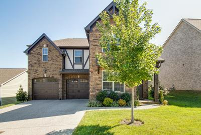 Nolensville Single Family Home For Sale: 1284 Maybelle Pass