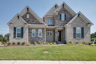 Nolensville Single Family Home For Sale: 101 Hankins Ct
