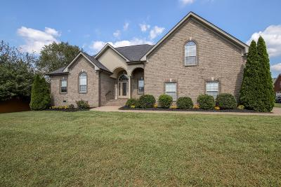 Sumner County Single Family Home For Sale: 101 Ashfield Ct