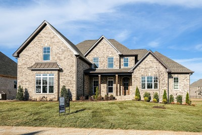 Spring Hill Single Family Home For Sale: 2038 Autumn Ridge Way (Lot 278)