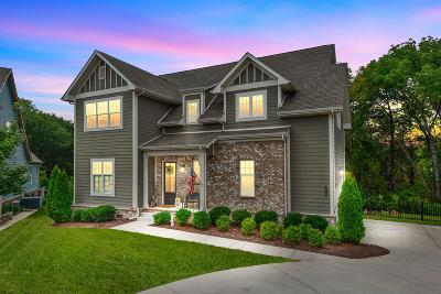 Nolensville Single Family Home For Sale: 7028 Fishing Creek Rd
