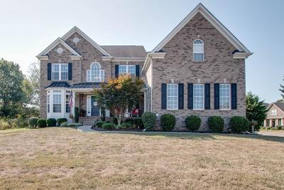 Spring Hill Single Family Home For Sale: 3008 Manchester