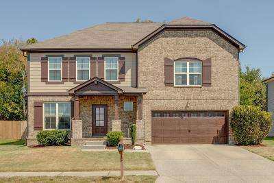 Spring Hill  Single Family Home For Sale: 1027 Achiever Cir