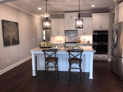 Hendersonville Single Family Home For Sale: 979 Cherry Grove Dr. - Lot 525