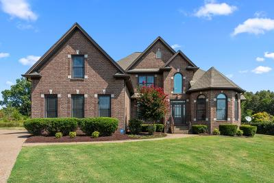 Mount Juliet Single Family Home For Sale: 202 Seven Springs Ct
