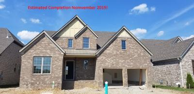 Nolensville Single Family Home For Sale: 1824 Apperley Drive, Lot 130