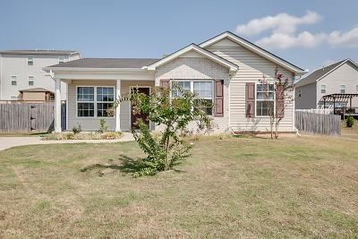 Spring Hill  Single Family Home For Sale: 1007 Timbervalley Way