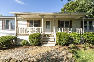 Mount Juliet Single Family Home For Sale: 12185 Central Pike