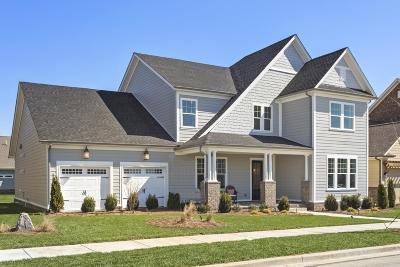Hendersonville Single Family Home For Sale: 164 Ashington Circle #32