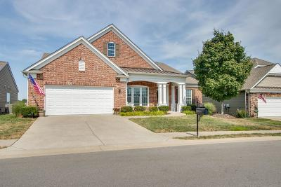 Mount Juliet Single Family Home For Sale: 552 Calibre Ln