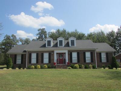 Summertown Single Family Home For Sale: 4714 Highway 43 N N