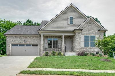 Spring Hill Single Family Home For Sale: 232 Star Pointer Way-Lot 34