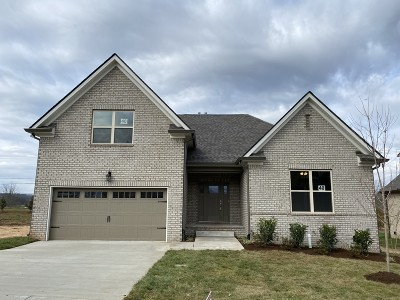 Spring Hill Single Family Home For Sale: 208 Star Pointer Way-Lot 40