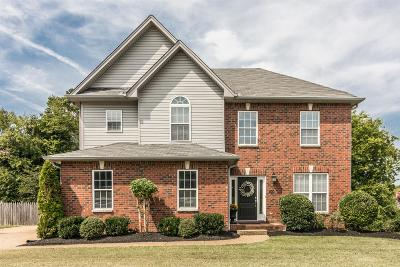 Hendersonville Single Family Home Active Under Contract: 100 Savo Bay