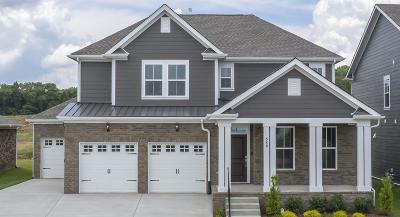 Hendersonville Single Family Home For Sale: 549 Nottingham Avenue #564