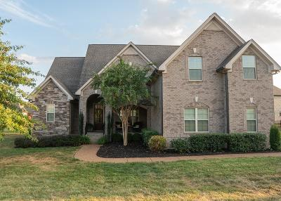 Spring Hill Single Family Home For Sale: 1787 Witt Way Dr