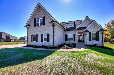 Mount Juliet Single Family Home For Sale: 7179 Couchville Pike