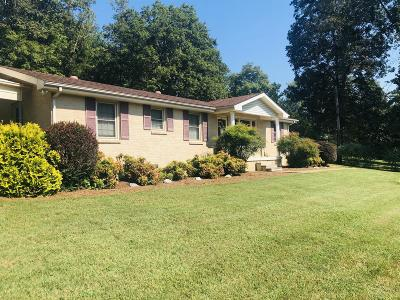 Dover Single Family Home For Sale: 133 Blane Ln