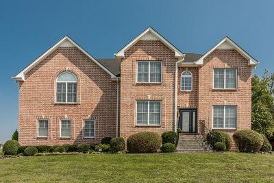Hendersonville Single Family Home For Sale: 123 Cedar Ridge Ln