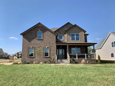 Clarksville Single Family Home For Sale: 136 Hickory Wild Lot 136