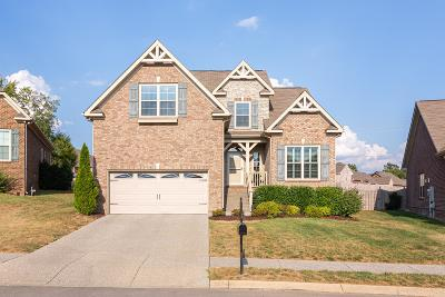 Spring Hill Single Family Home For Sale: 3081 Foust Dr
