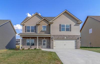 Clarksville Single Family Home For Sale: 1329 Millet Drive