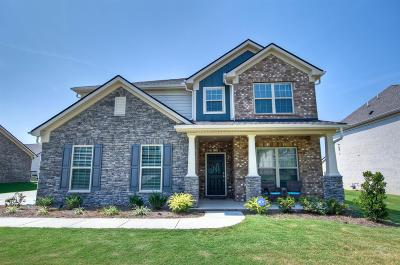 Spring Hill  Single Family Home For Sale: 1033 Maleventum Way