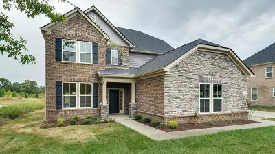 Nolensville Single Family Home For Sale: 1114 Crossfield Dr #225