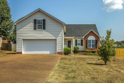 Spring Hill Single Family Home For Sale: 2108 Kenowick Ct