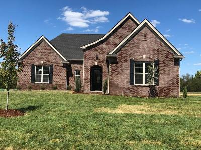 Nolensville Single Family Home For Sale: 412 Lively Way. #32