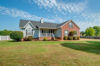 Spring Hill Single Family Home For Sale: 2104 Spring Lake Dr