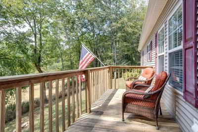 Pulaski Single Family Home For Sale: 3675 Ball Hollow Rd