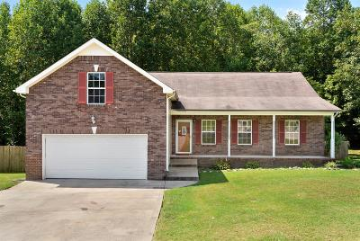 Clarksville Single Family Home For Sale: 1517 Cedar Springs Cir