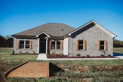 Pulaski Single Family Home For Sale: 119 Dickson Marks Rd