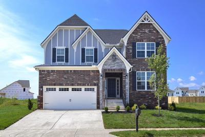 Spring Hill Single Family Home For Sale: 561 Crutcher Ct Lot 80