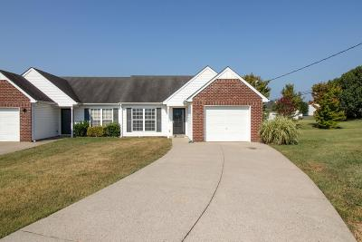 Smyrna Single Family Home For Sale: 707 Erie Ct