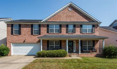 Antioch Single Family Home For Sale: 1284 Blairfield Dr