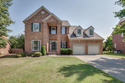 Nashville Single Family Home For Sale: 7041 Meadow Ridge Cir