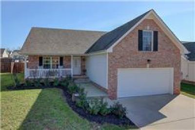 Clarksville Single Family Home For Sale: 1524 Cedar Springs Cir